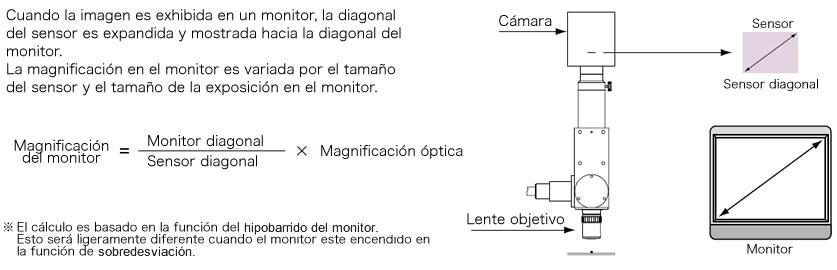 Magnificación del monitor