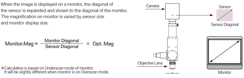 Monitor Magnification