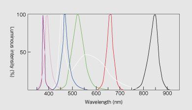 Emission spectrum1