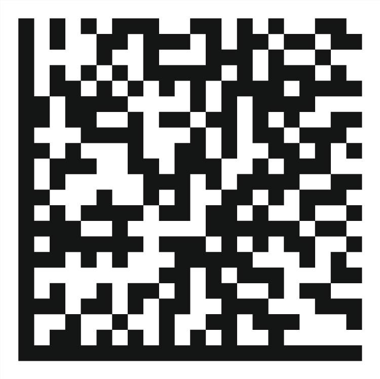 ICチップ上のデータマトリックスコードの読み取り検査